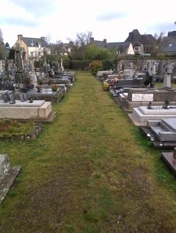 Exemple d'enherbement des allées au cimetière de Questembert, 3 ans après